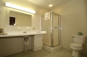 Efficiency Unit Bath